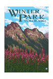 Winter Park, Colorado - Fireweed and Mountains Prints by  Lantern Press