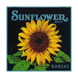 Kansas - Sunflower Brand Crate Label Poster von  Lantern Press