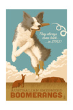 Australian Shepherd - Retro Boomerang Ad Poster by  Lantern Press