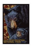 Great Smoky Mountains National Park - Black Bears - Mosaic Prints by  Lantern Press