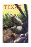 Texas - Armadillo Posters by  Lantern Press