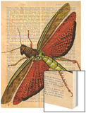 Vintage Grasshopper Wood Print by  Fab Funky