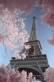 Eiffel Tower- Through Spring Trees Afiche