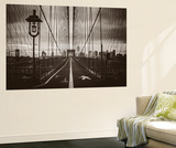Cabel's Web Wall Mural by John Brooknam