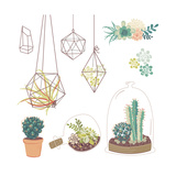 Vector Set with Succulents, Flowers and Glass Terrariums Posters by Alisa Foytik