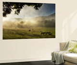 Running in the Mist Premium Wall Mural by Danny Head