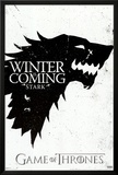 Game of Thrones - Winter is Coming - House Stark Photo
