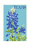 Texas - Bluebonnet - Letterpress Poster by  Lantern Press