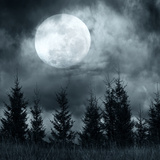 Magic Landscape with Pine Tree Forest under Dramatic Cloudy Sky at Full Moon Mysterious Night Photographic Print by Perfect Lazybones