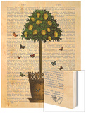 Lemon Tree Wood Print by  Fab Funky