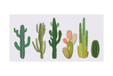 Cactus Collection in Vector Illustration Prints by Roberto Chicano