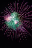 Green and Violet Amazing Fireworks Isolated in Dark Background Photographic Print by  lucky-photographer