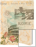 Visiting Rome Wood Print by Jennifer Goldberger
