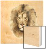 Safari Cat II Wood Print by Grace Popp