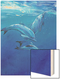 Under Sea Dolphins Wood Print by Tim O'toole