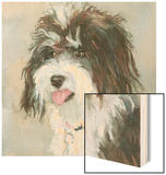 Neely Schnoodle Wood Print by Edie Fagan