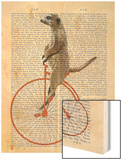 Meerkat on Orange Penny Farthing Wood Print by  Fab Funky