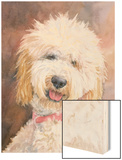 Honey Goldendoodle Wood Print by Edie Fagan