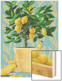 Opulent Citrus I Wood Print by Grace Popp