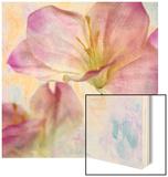 Pink Hyacinth II Wood Print by Honey Malek