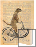 Meerkat on Bicycle Wood Print by  Fab Funky