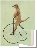 Meerkat on Black Penny Farthing Wood Print by  Fab Funky