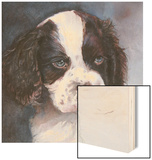 Minnie Springer Spaniel Wood Print by Edie Fagan