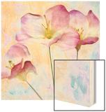 Pink Hyacinth IV Wood Print by Honey Malek