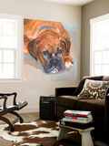 Baillie Boxer Wall Mural by Edie Fagan