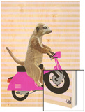 Meerkat on Pink Moped Wood Print by  Fab Funky