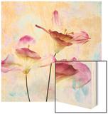 Pink Hyacinth VI Wood Print by Honey Malek