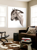 Wild Horse II Wall Mural by Grace Popp