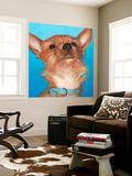 Dlynn's Dogs - Gratitude Wall Mural by Dlynn Roll