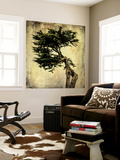 Grand Cypress Wall Mural by Honey Malek