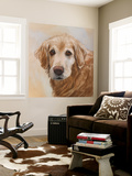 Chelsea Golden Retriever Wall Mural by Edie Fagan