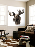 Western Animal Study III Wall Mural by Grace Popp