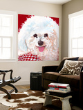 Dlynn's Dogs - Marie Wall Mural by Dlynn Roll