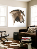Wild Horse I Wall Mural by Grace Popp