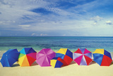 Seven Umbrellas on the Smooth Sands of an Empty Beach in the Caribbean Photographic Print by  Medioimages/Photodisc
