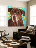 Dlynn's Dogs - Get Your Ball Wall Mural by Dlynn Roll