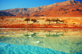 Dead Sea Salt Shore Photographic Print by  vvvita