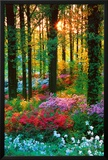Bosque de flores Póster