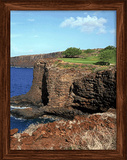 Golf Hawaii 3D Framed Art Affiche