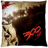 300 - Cliff Throw Pillow Throw Pillow