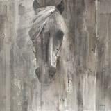 Shadow Light Kunst von Albena Hristova