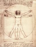 Den vitruviske mann, ca. 1492 Plakater av Leonardo Da Vinci