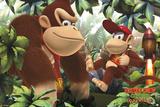 Donkey Kong & Diddy Kong Prints