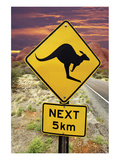 Kangaroo 5Km Olgas Rock Outback Poster