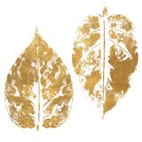 Gold Otono I (gold foil) Prints by Patricia Pinto