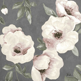 Dusty Rose II Poster von Patricia Pinto